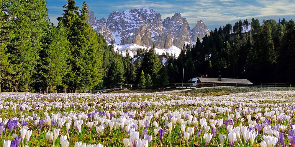 The spring welcomes you - the enchanting of the Isarco Valley