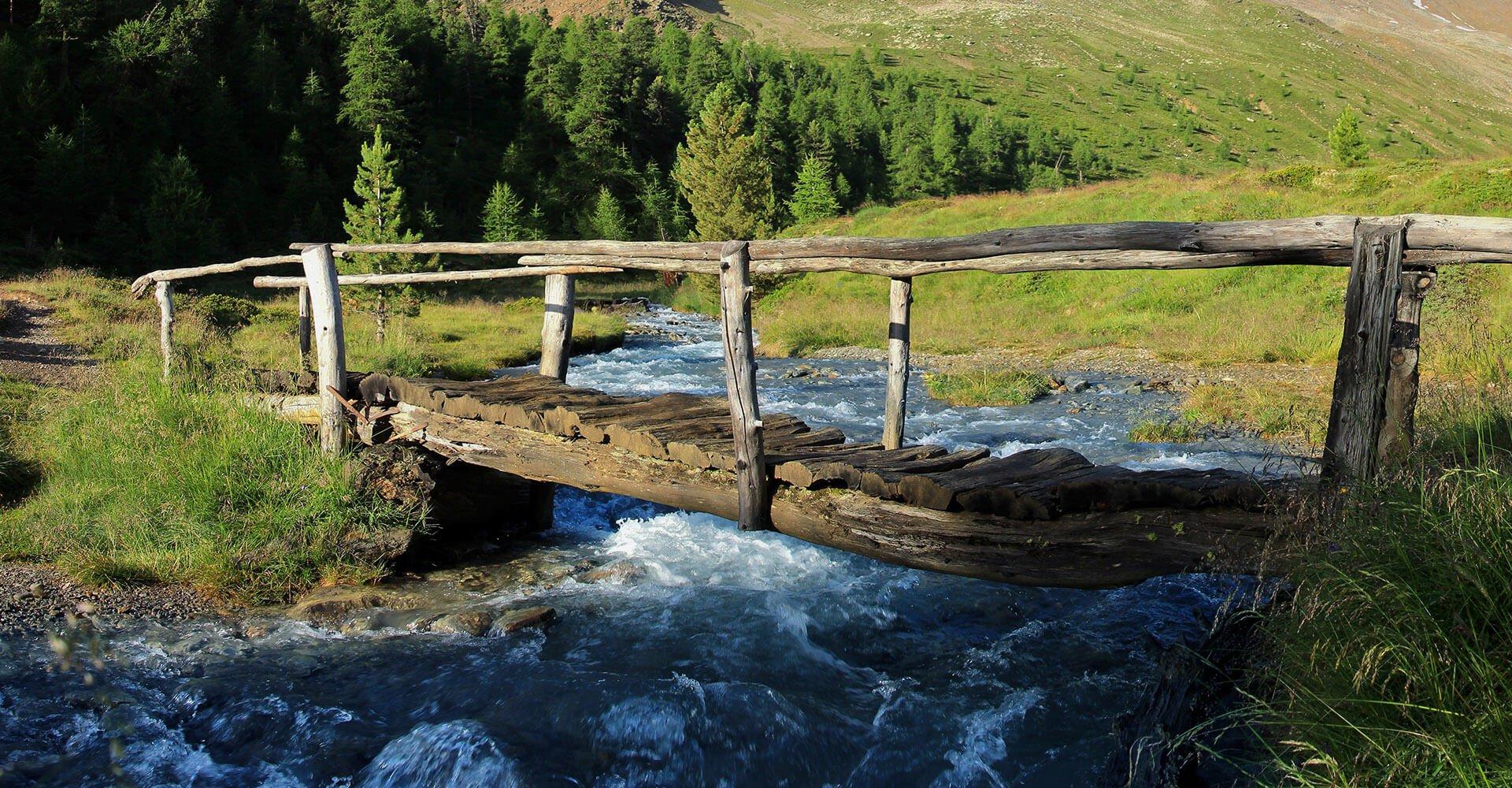 Sommerurlaub in Lüsen - Wanderungen auf der Lüsner Alm