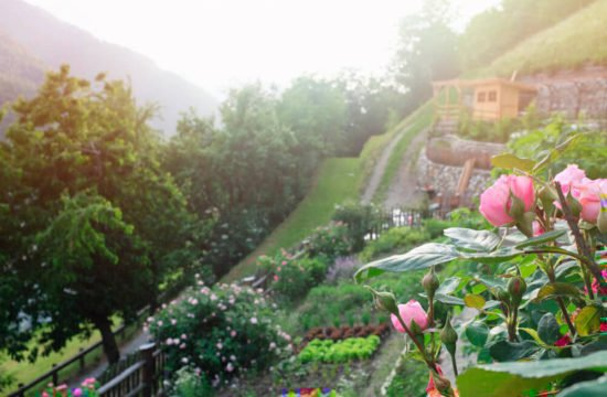 residencetirol-giardini-14