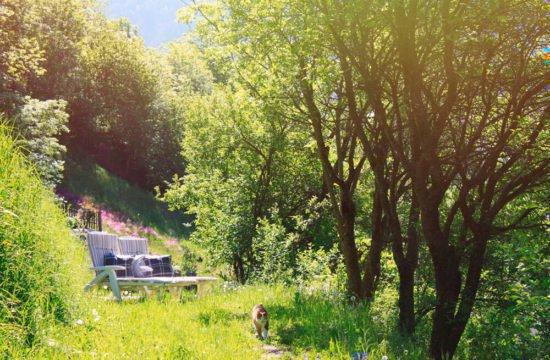 residencetirol-garden-2