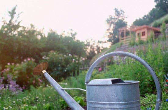 residencetirol-garden-5